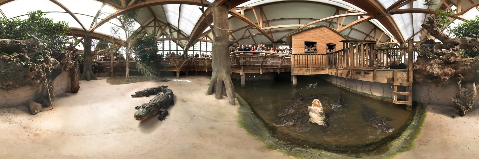 La serre aux aligators - panorama